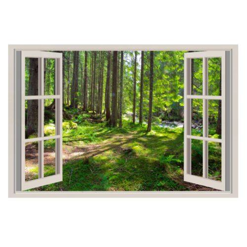 falsa ventana bosque
